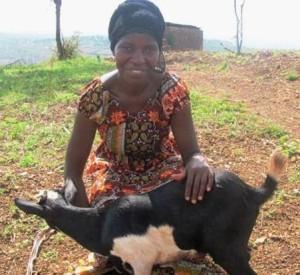 Margaritha w goat c