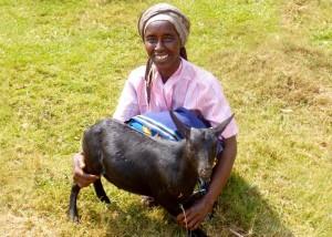 Abishyizehamwe goat lo c