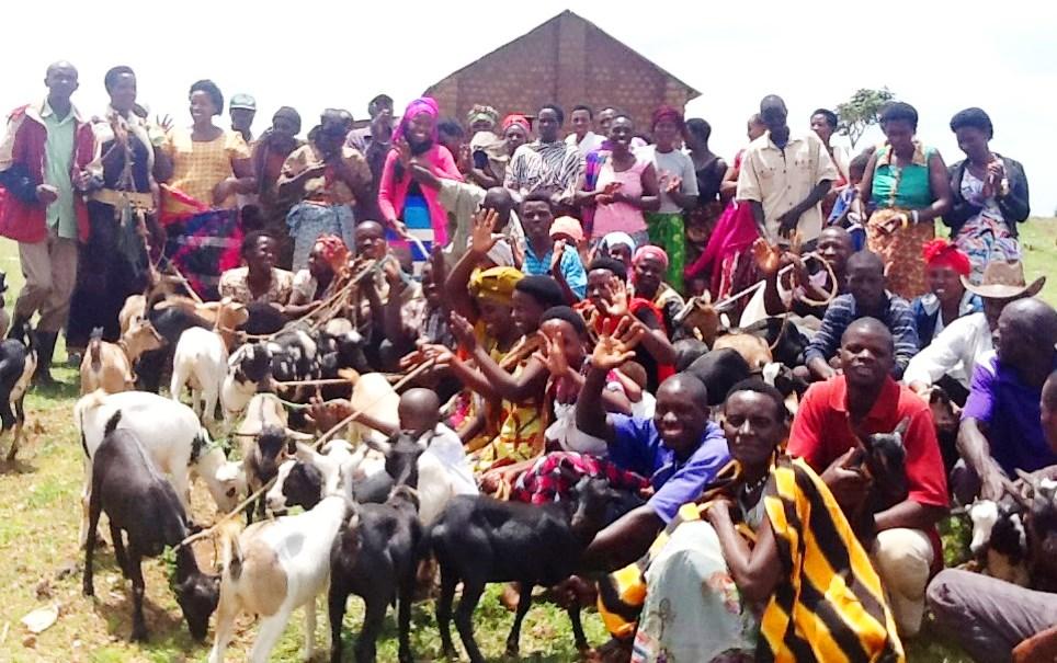 1 goats