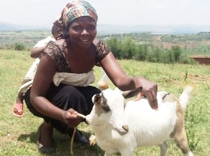 """""""This goat is one of the answers I have been looking for. I now get fertilizer for my small farmland and I see this goat as the right help for my future small business ideas."""" Uwase Kamikazi"""