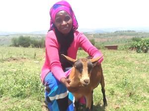 k goat pink scarf