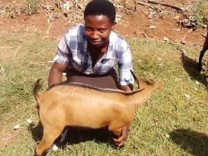"""This goat means a lot of things for me but the first thing is fertilizer. I am now going to be among people who get fertilizer without struggling. From tomorrow, I will start getting it for my farming activities. This all shows how lovely our donors are for us."" Sandrine Umuhoza"