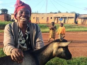 8 Dative Genda goat close tan