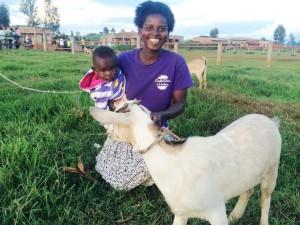 Genda goat ! baby