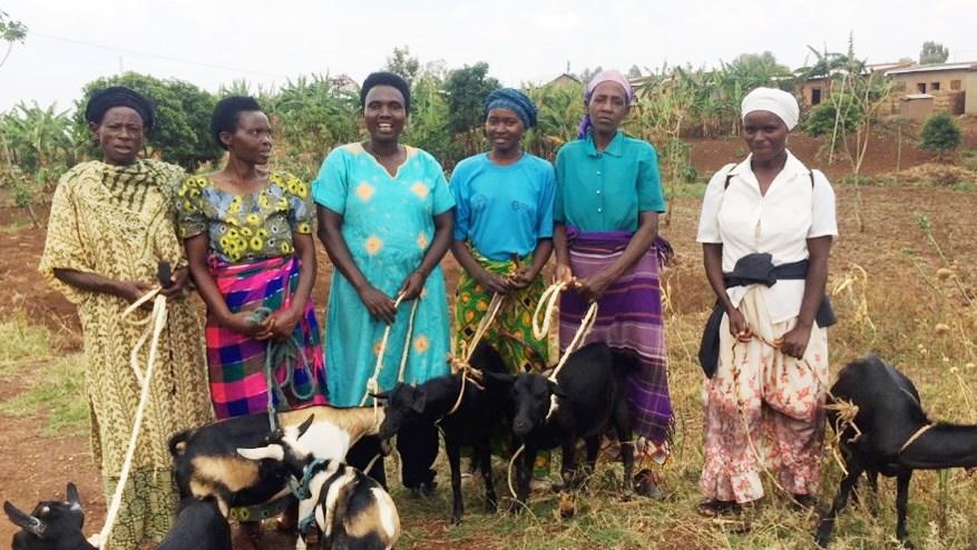 komera women with goats