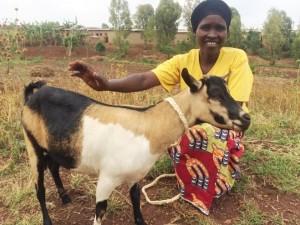 1 goat Gentile Nyiraneza