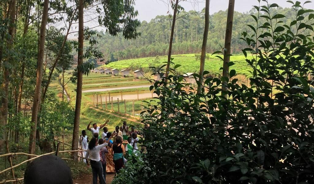 ! 9 Kungabu descent dm slide