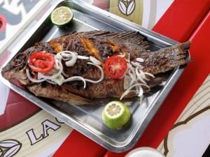 Kungabul dinner Tilapia - Jojo