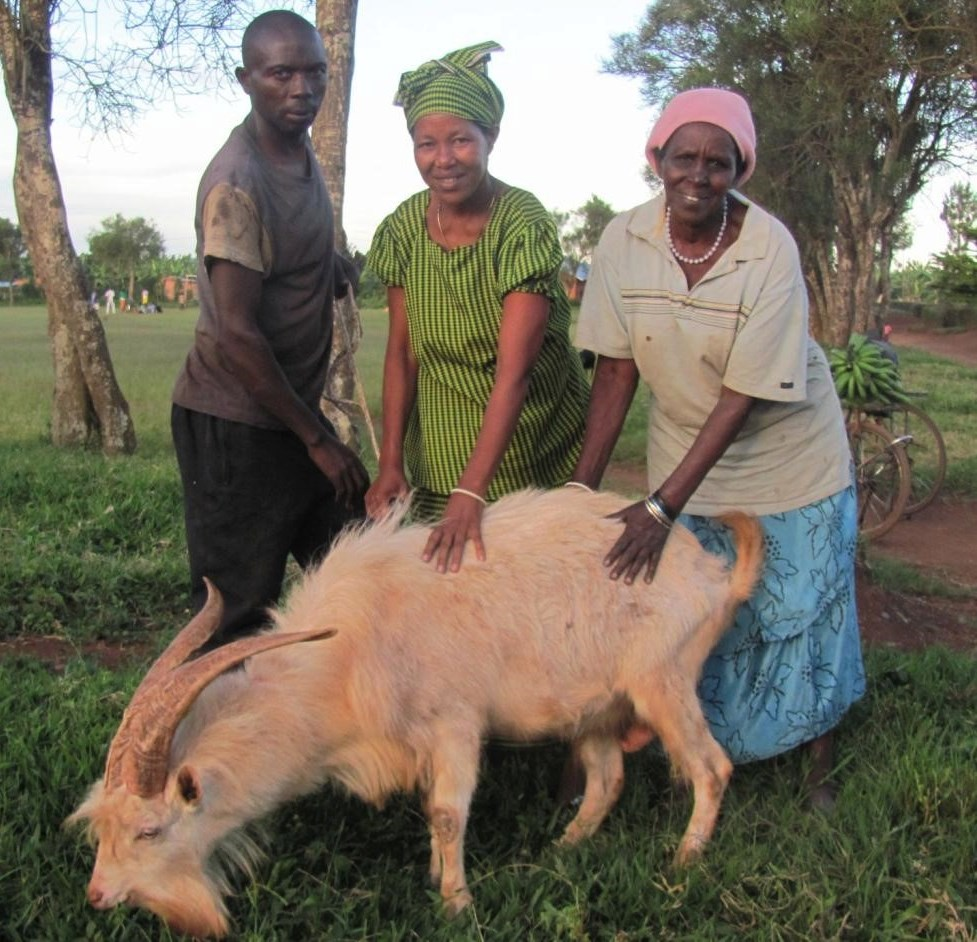 Gratie Muhutukazi Ruganeheza milk goat