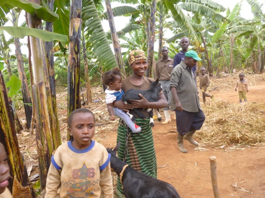 Ntibi never again family goats - Janet