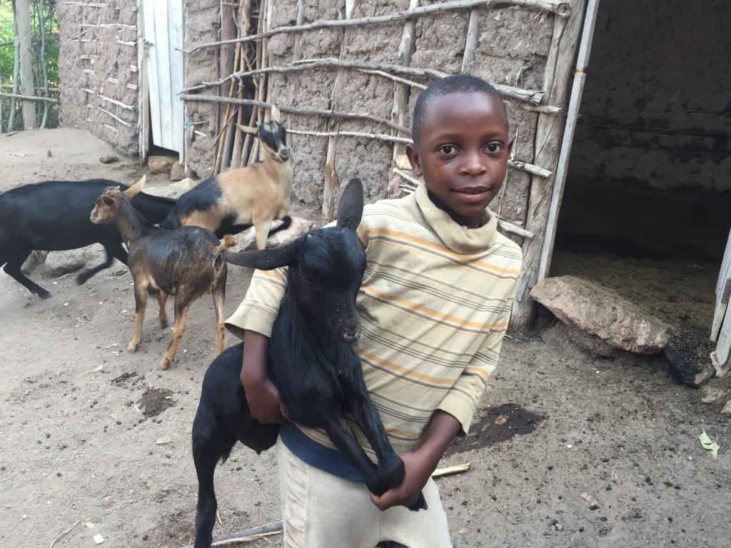 Ejo boy and goat