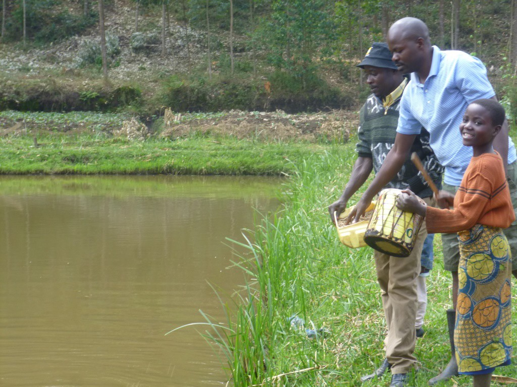 10 Kungabu pond drum calling fish