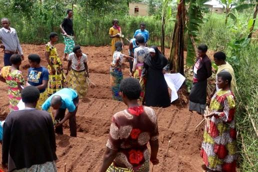 Planting the garden using Bio-intensive methods
