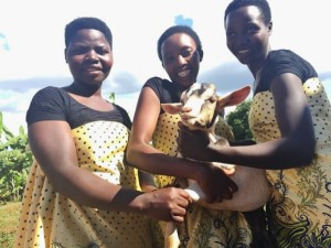 """Valerie (in the middle): """"For us, goats mean a lot; you cannot be sure of any farming related production when you don't use fertilizer. I mean, farming without rich fertilizer is almost the same from not doing it at all. Our donors can easily see what these goats mean in our lives and how they are going to impact our farming. We thank you so much for supporting us with this sustainable support."""""""
