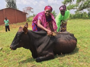 """Valerie (green scarf): """"These cows will tremendously change our lives. There is no way to tell you what your support means in our lives. You gave us a word to say in our community, Hope. We thank you so much."""""""