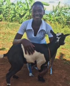 Itorero goats 3