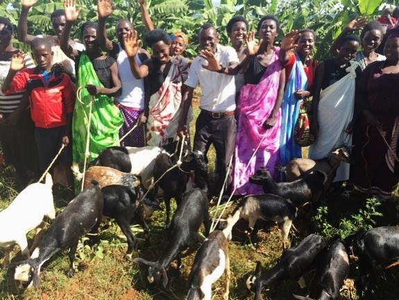 ! Itorero goats group