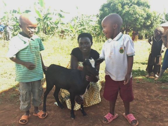 Itorero goats kids 1